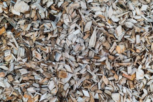 Der Großteil der Rezemo-Kapseln besteht auch Holz. Aber eben nicht nur. Denn damit die Holzspäne halten, braucht es den Biokunststoff PLA.